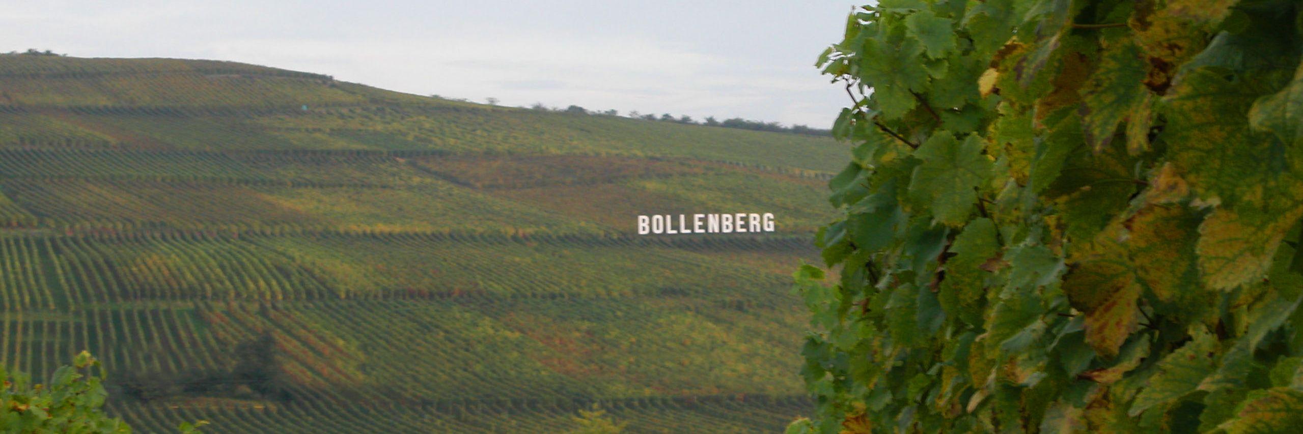 grand Cru Bollenberg Lucien Albrecht